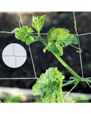 Filet pour les plantes grimpantes 300 x 150 cm